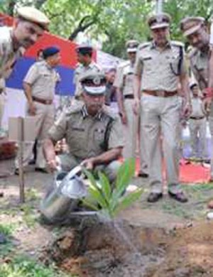 delhi police commissioner planted tree