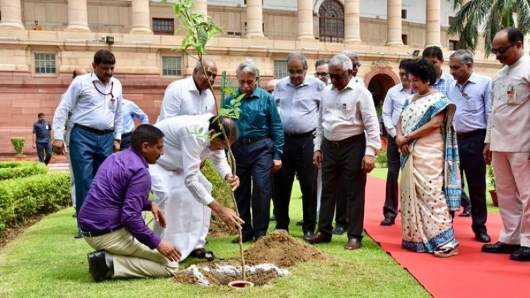 vice president m. venkaiah naidu plantation in parliament house